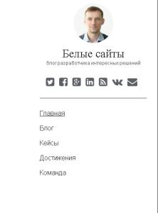 Главное меню сайта wp
